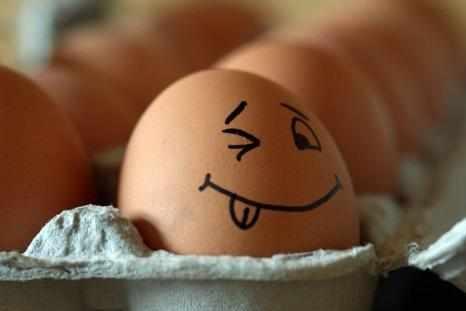 Срок годности ккуриных яиц