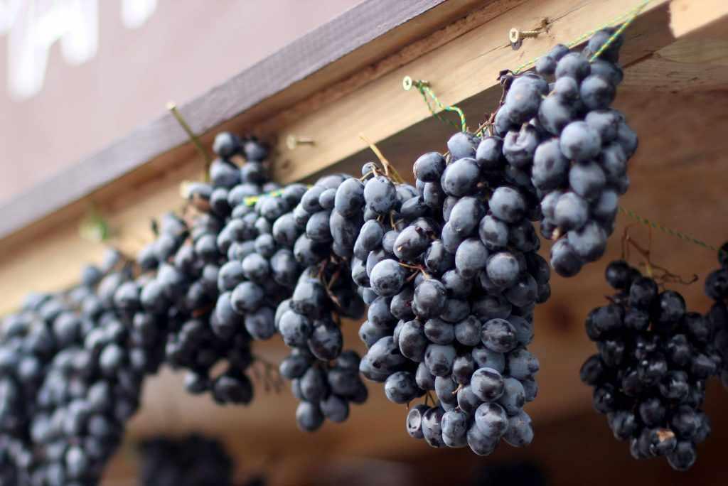 Хранение виноград