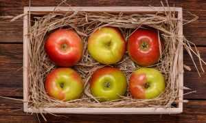 Яблоки в ящике с сеном