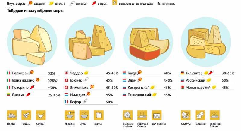 разновидности сыров и их особенности