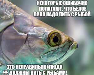 Мем про белое вино и рыбу