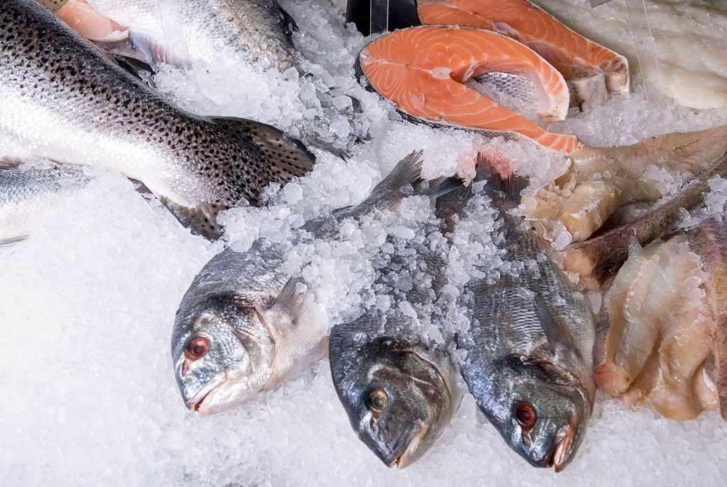 Сроки хранения соленой рыбы