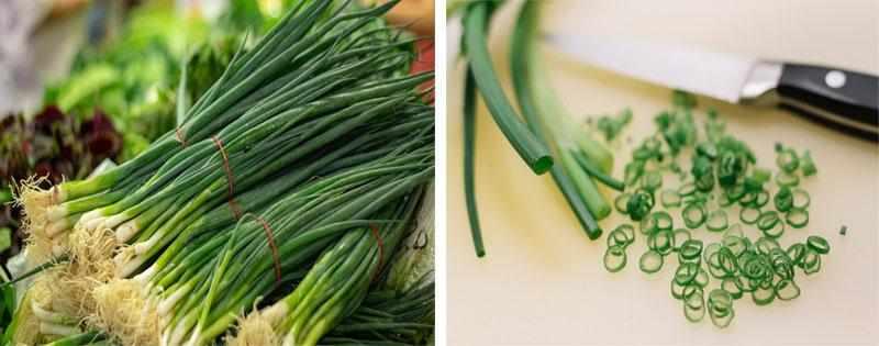 Заготовка зеленого лука