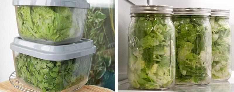 Способы заморозки салата