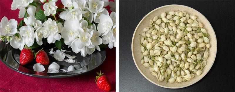 Сушеные цветы жасмина