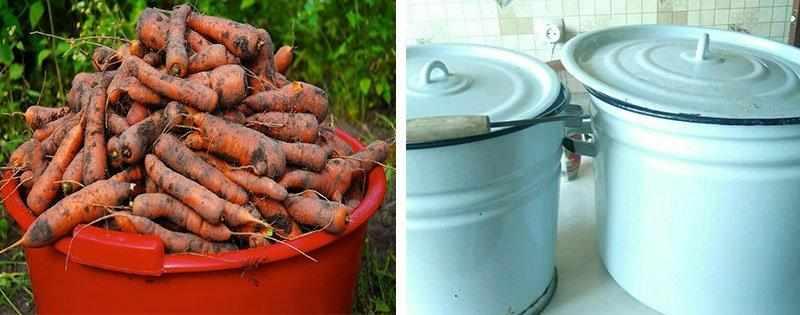 Морковь в кастрюлях