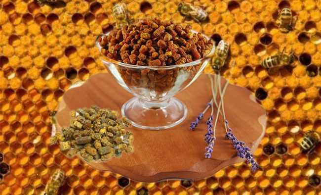 Перга пчелиная: применение и хранение в домашних условиях