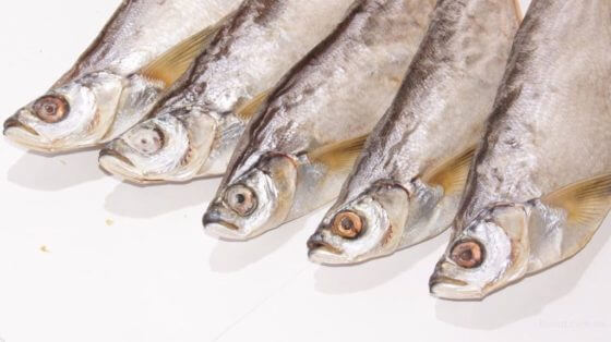 Хранение вяленой рыбы в холодильнике