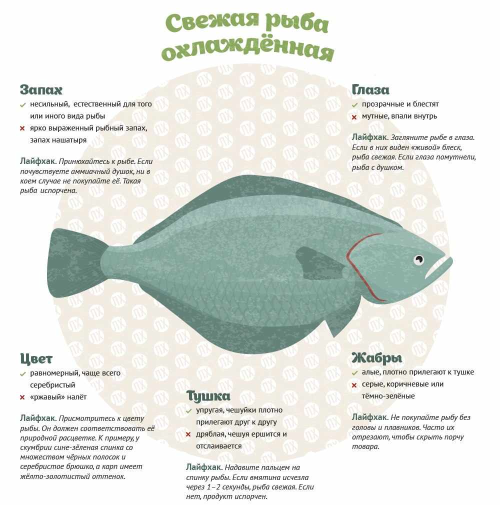 Сколько хранится жареная рыба в холодильнике: способы хранения