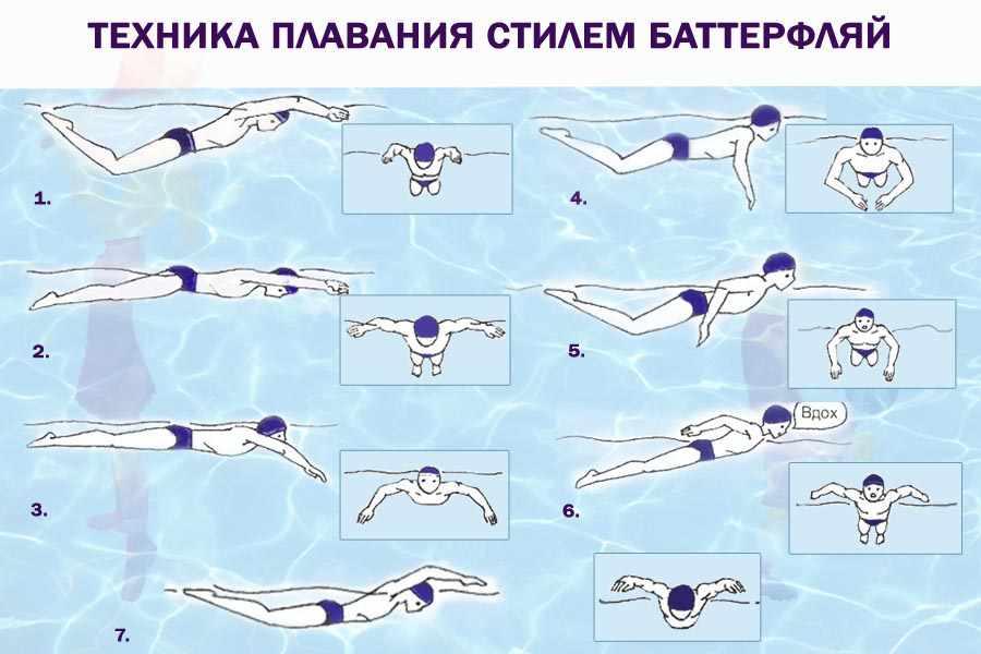 tehnika-plavaniya-stilem-batterflyaj