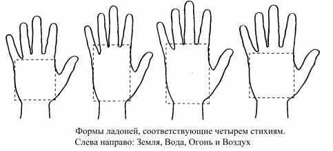 типы рук