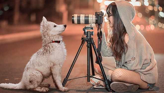 девушка со штатива фотает собаку